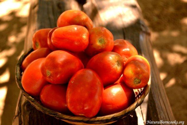 pomodori_orto_sicilia