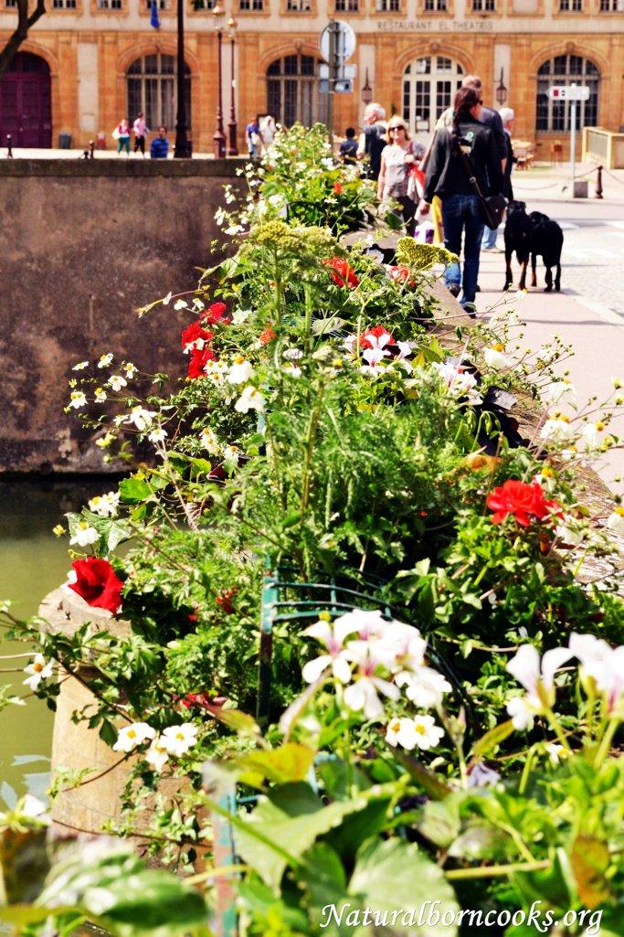 fioriere_città