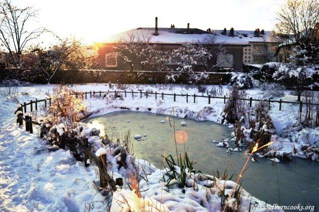 lago_ghiacciato_neve