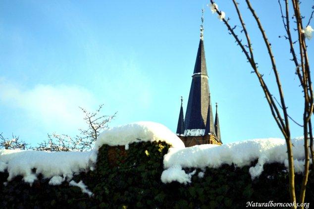 neve_guglia