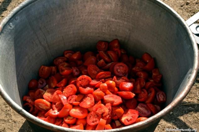pomodori_conserve_calderone