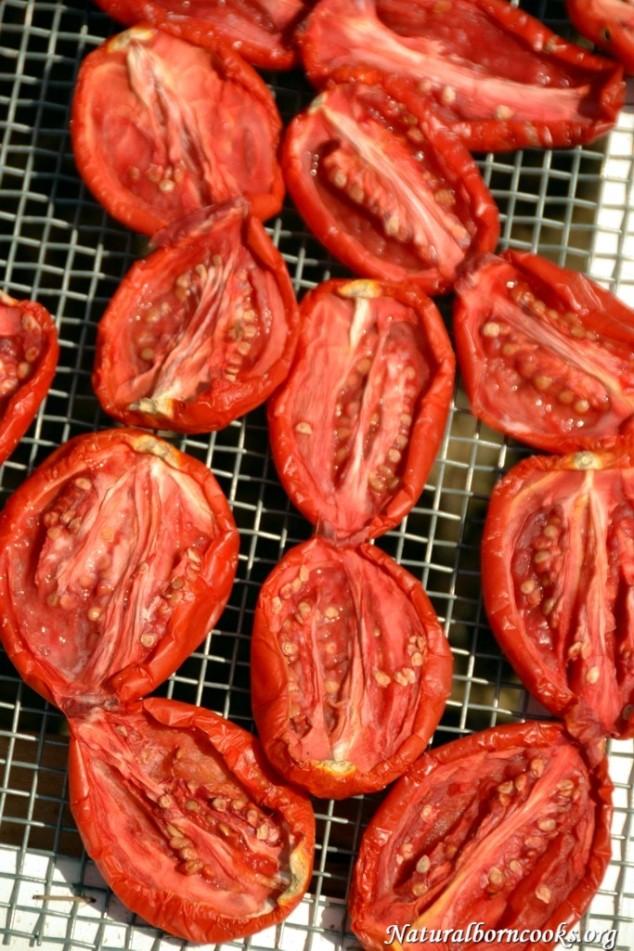 pomodori_secchi_gratella_