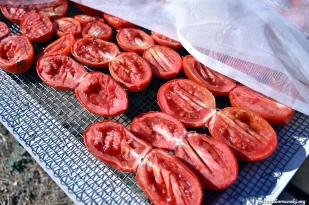 pomodori_secchi_secondo_giorno_gratella