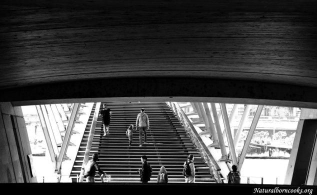 Pont_paris_escalier